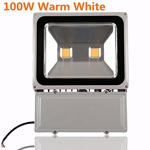 Richday LED Flood Light 100W Super Bright Outdoor Security light 110V 120V Waterproof Flood Fixture 3500K Warm White Floodlight Lamp 900W Halogen Bulb Equivalent (Bowfishing Led Lights compare prices)