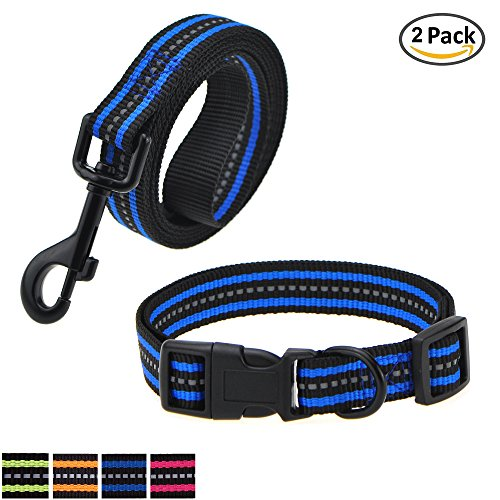 Pet Set Dog Leash Collar (Mile High Life Night Reflective Double Band Design Nylon Small Animal Dog Pet Adjustable Collar, Leash and Harness Combo Set (Small, Blue 2 Pack Leash Collar))