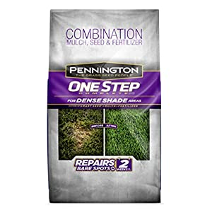 Pennington 100520284 One Step Complete Bare Spot Repair Grass Seed Mix for for Dense Shade Areas, 8.3 lbs