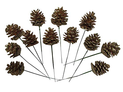 Natural Pinecones with Floral Pick - 2 Inch Pinecones with 5