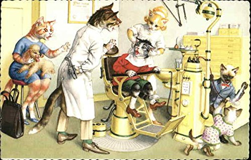 Cats at the Dentist Dressed Animals Original Vintage Postcard from CardCow Vintage Postcards