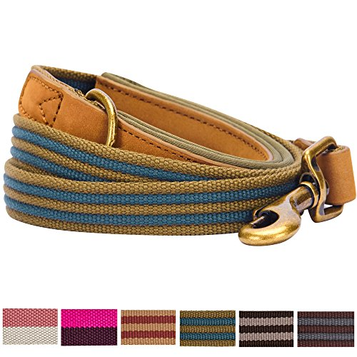 Blueberry Pet 6 Colors Classic Staple Striped Genuine Leather and Polyester Webbing Dog Leash with Soft & Comfortable Handle, 4 ft x 1