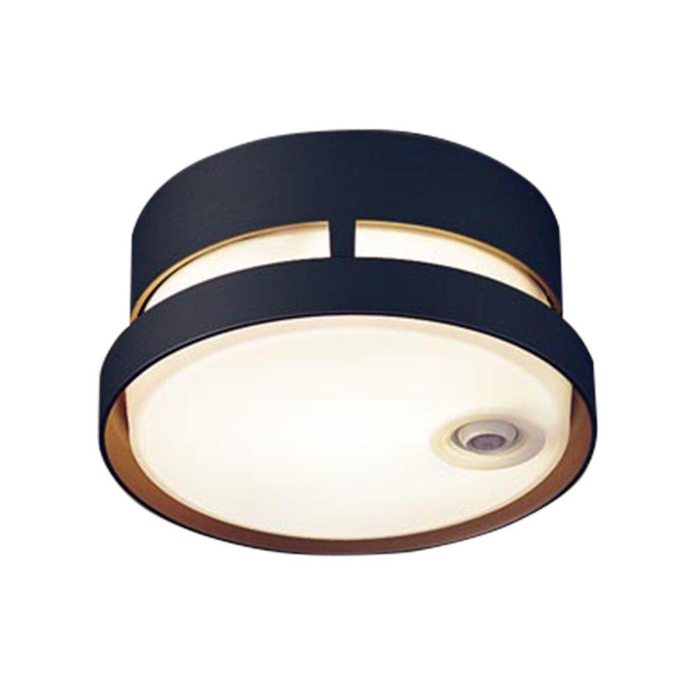 パナソニック(Panasonic) LEDシーリングライト 40形  電球色 LGWC56020BK B01E2BKSLS 14380