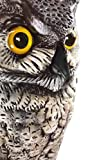 Dalen OW6 Gardeneer By  Natural Enemy Scarecrow Great Horned Owl
