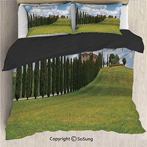 Tuscan Black Bedding Set,Landscape Abandoned Farm House Vineyard on Hill Tall Trees Village Path Queen Size Decorative 3 Piece Duvet Cover Set with 2 Pillow Shams,Green and Light Blue ()