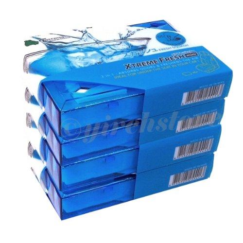 Treefrog Fresh Box Mini Fresh Squash Scent Air Freshener 4 - Mini Spencer