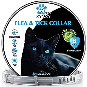 zymzy Parasiticide Collar for Cats - 100% Safe & Eco-Friendly - Based on Natural Oils - Anti-parasitic Prevention Pets - Waterproof Anti-parasitic Collar - 6 Month Protection 48