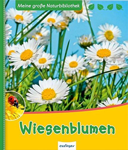 Wiesenblumen (Meine große Naturbibliothek)