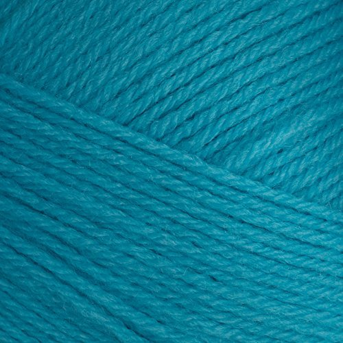 Lion Brand Yarn Pound of Love Turquoise
