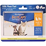 PetArmor FastCaps (nitenpyram) Oral Flea Treatment Medication, 2-25 lbs, 6 count