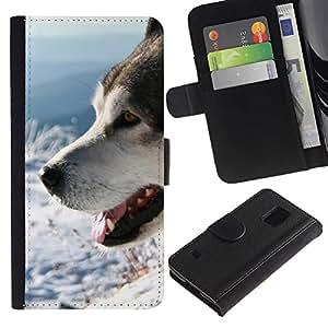 Billetera de Cuero Caso Titular de la tarjeta Carcasa Funda para Samsung Galaxy S5 V SM-G900 / Siberian Husky Alaskan Malamute Winter Dog / STRONG