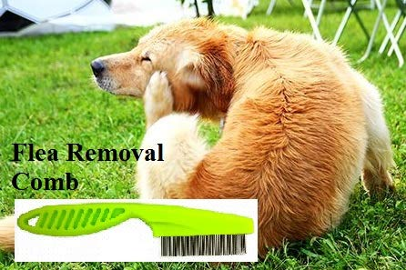 ... Dog brush Shed defender hair remover Deshedding Dematting tool Kit Flea Tick lice comb Pet Hair Lint remover Silicone Brush for furniture guante de aseo ...