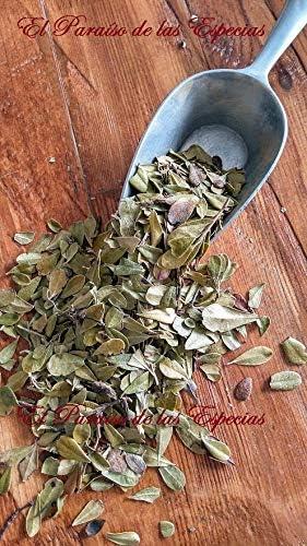 Gayuba Hojas Extra 1000 grs - Gayuba Planta Natural 100% 1 Kg
