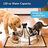PetSafe Drinkwell Stainless Multi-Pet Dog and Cat