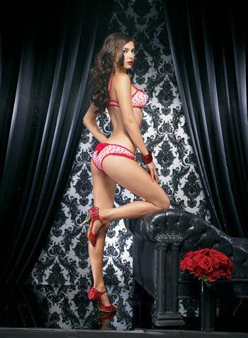 Leg Ave Mesh Hearts Bikini Top Sm Md ()
