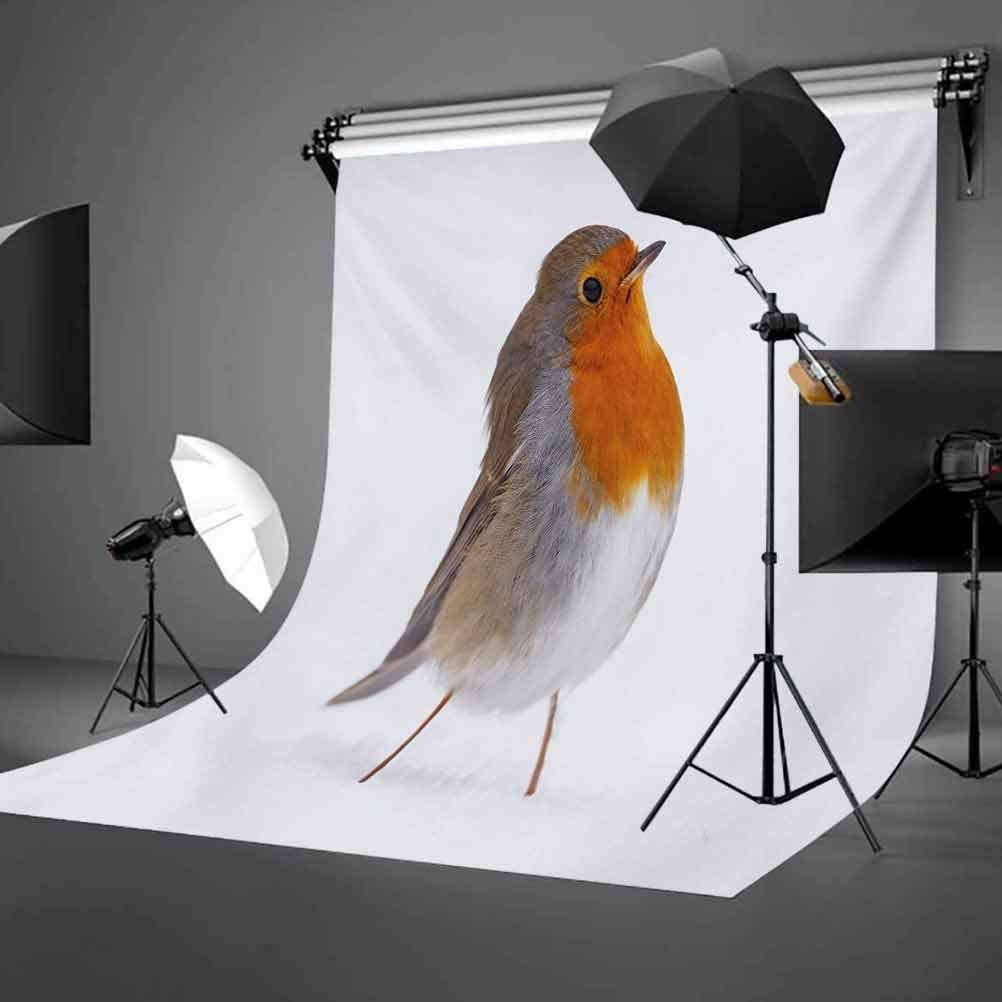 10x12 FT Photography Backdrop Cute European Robin Standing in Snow Songbird Beak and Feathers Winter Season Background for Baby Shower Birthday Wedding Bridal Shower Party Decoration Photo Studio