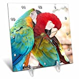 3dRose USA, Florida, Orlando, Blue-and-Yellow Macaw & Scarlett Macaw. – Desk Clock, 6 by 6-Inch (dc_206694_1) For Sale