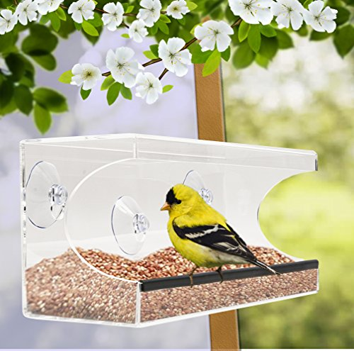 Large Window Bird Feeder For Kids And Pets, Squirrel Proof   Clear Acrylic  Plastic See  Through Wild Bird Feeder With Strong