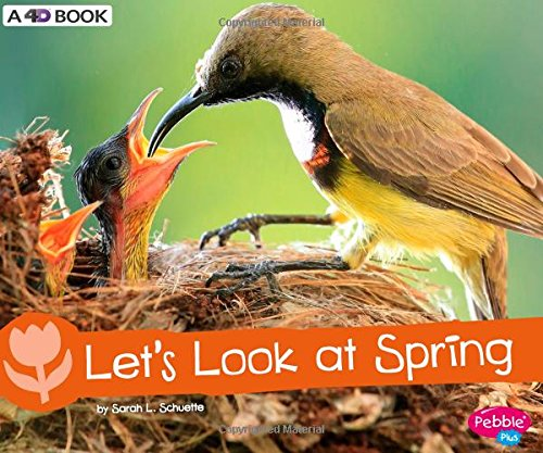 Let's Look at Spring: A 4D Book (Investigate the Seasons)