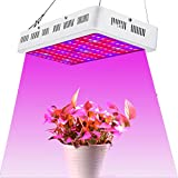 Best Led Grow Lights - Full Spectrum 1000W LED Grow Light, LED Plant Review