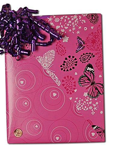 24'' X 100' Flutter/Hearts Gift Wrap by Paper Mart