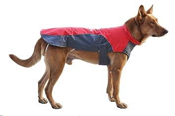 Moonpet - chaleco impermeable resistente al viento para perro con abrigo de clima frío – abrigo