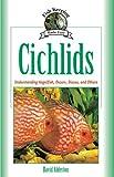 Cichlids: Understanding
