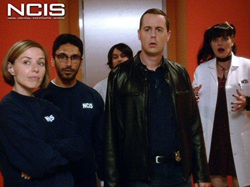 Ncis Tv (House Rules)