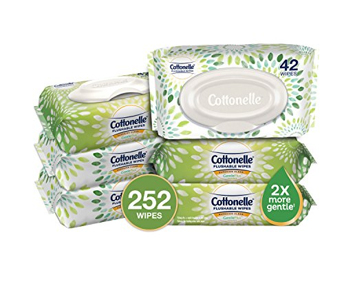 Cottonelle GentlePlus Flushable Wipes with Aloe & Vitamin E, 42 Count (Pack of 6)