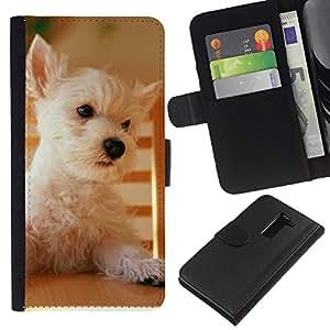 Australian Terrier Cairn Norfolk West Dog - la tarjeta de Crédito Slots PU Funda de cuero Monedero caso cubierta de piel LG G2 D800