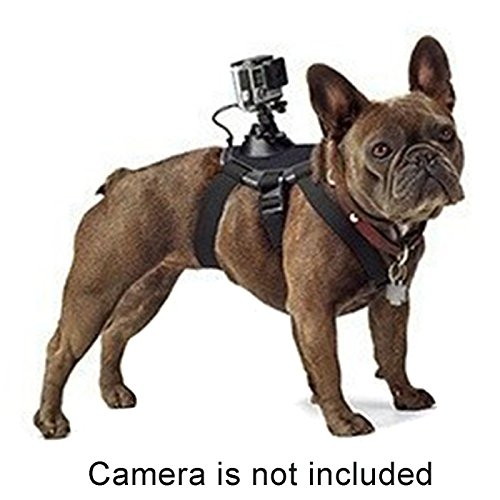 Alfie Pet by Petoga Couture - Enfys GoPro Hero 4/3+/3/2/1 Harness for Pet by Alfie (Image #1)