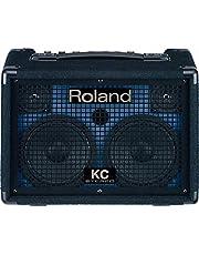 رولاند KC110 - مكبر مفاتيح ستيريو