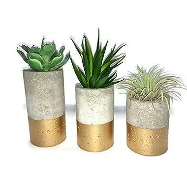 Concrete Succulent Planters. Urba planters (set of 3) Gold.