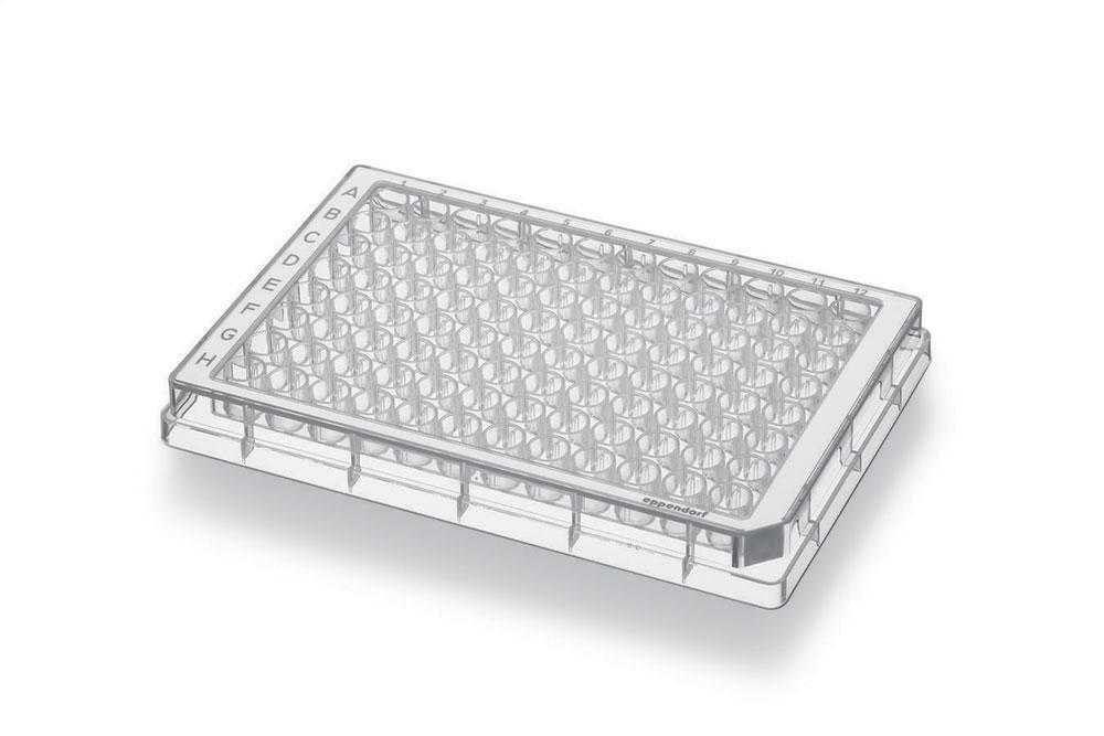 Eppendorf 951040308 Polypropylene White Conical Bottom 96 Well Assay Microplates with Grey Optitrack Frame, PCR Clean, 350microliter Volume (Case of 80)