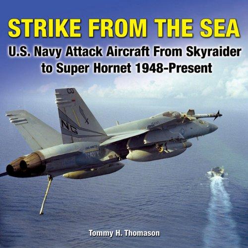 Us Navy Hornet - 3