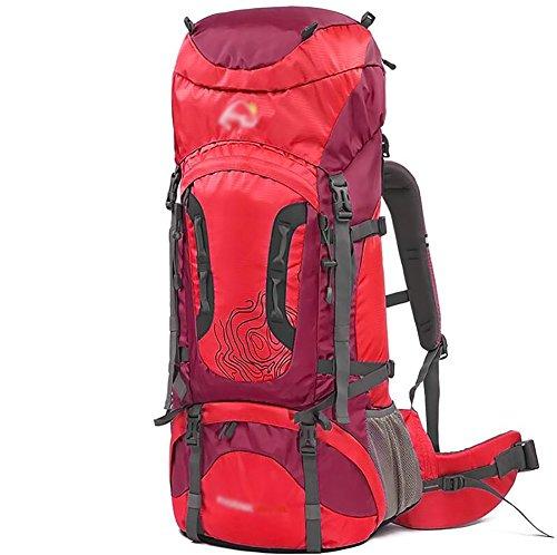 HWLXBB Outdoor Bergsteigen Tasche Männlich Lady Camping Tourismus Wasserdichte Light Mountaineering Rucksack ( Farbe : 2* , größe : 60l )