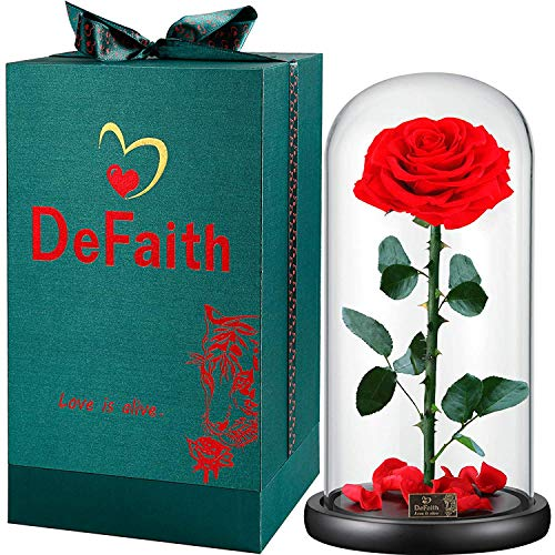 (DEFAITH Real Rose 13''H Beauty and The Beast Enchanted Rose, Preserved Fresh Rose in Glass Dome Romantic Forever Gift for Her Anniversary Valentine's Day Christmas Mothers Day)