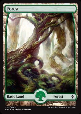 Magic: the Gathering - Forest (270) (270/274) - Battle for Zendikar - (Mtg Zendikar Foil)