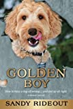 Golden Boy: How to raise a dog all wrong . . . and end up all right - A Memoir (Sort of)