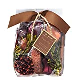 Cinnamon Cider Large Decorative Fragrance Bag 14 Ounces by Aromatique
