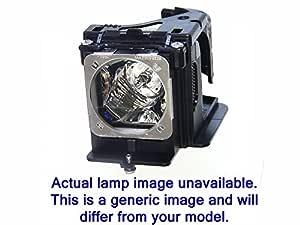 Optoma hd36 (BL de fu310 a/FX.pm584 - 2401) Bombilla: Amazon.es ...