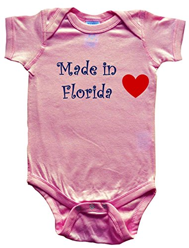 - Made in Florida - Florida Baby - State-Series - Pink Baby One Piece Bodysuit - Size Small (6-12M)