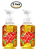 Bath & Body Works Wild Honeysuckle Gentle Foaming Hand Soap - Pack of 2 Honeysuckle scented soaps,8.75 fl oz each