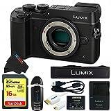 Panasonic DMC-GX8 (BLK1) Lumix Digital Camera Bundle (Black)
