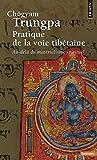 Pratique de la voie tibétaine. Au-delà du matérial