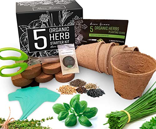 5 Herb Garden Grow Kit - Complete Non-GMO Heirloom Sprouting Kit for Indoor or Outdoor Herbs Garden, Starter Kit Includes Peat Pots, Herb Seeds, Nutrients, Bonus Scissors - Unique Gardening Gift