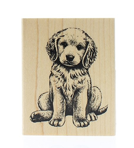 Rubber Stamp w/Wood Handle: Baby Retriever Puppy Dog