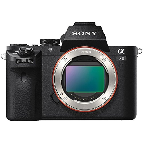 51XdWJEs4aL - Sony Alpha A7 II Digital Camera Body with FE 50mm f/1.8 Lens + 64GB Card + Backpack + Flash + Battery & Charger + Kit