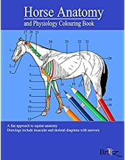 Horse Anatomy and Physiology Colouring Book: A Detailed Guide to Equine Anatomy with Answers   Perfect Gift for Veterinary Students, Animal lovers, Adults, and Teens