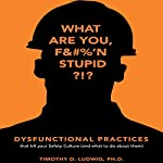 Dysfunctional Practices: That Kill Your Safety Culture (and What to Do About Them) | Timothy D. Ludwig PhD